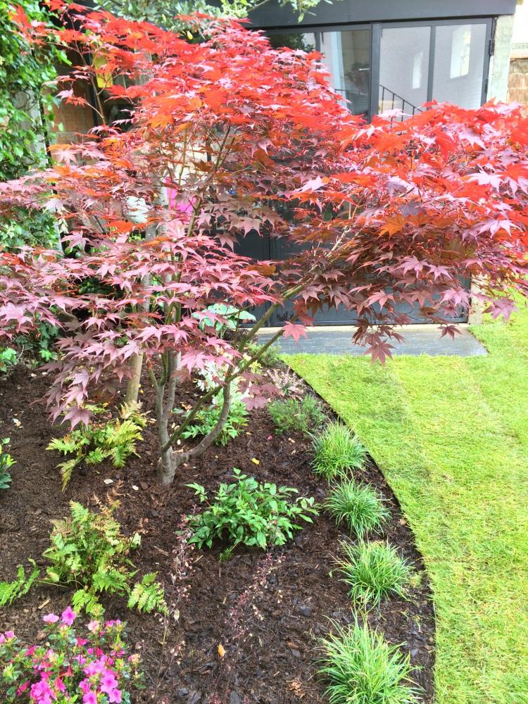Jardin urbain ext rieurs verts les paysagistes jardiniers for Jardiniers paysagistes