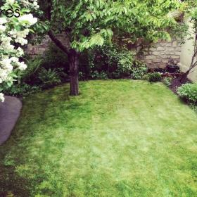 R alisations ext rieurs verts les paysagistes jardiniers for Jardinier paysagiste 78